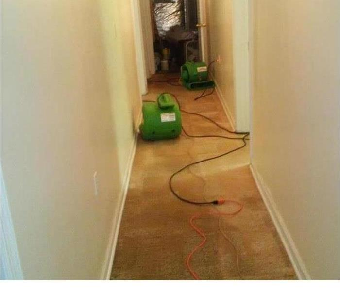 Water Damage in Mobile, AL