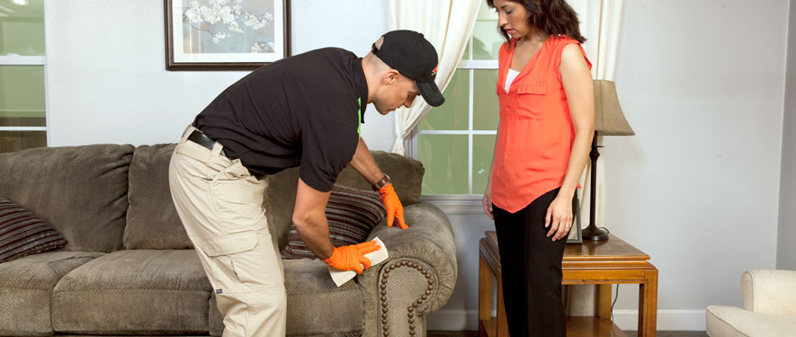 Mobile, AL carpet upholstery cleaning
